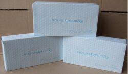 Kapesníčky Harma box 100 ks-Kapesníky papírové, 20x21cm, 100 ks v boxu, 2vrstvé, bílé.